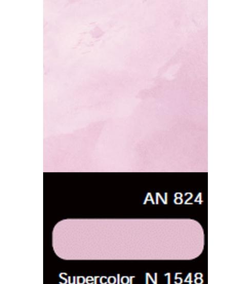AN 824