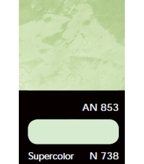 AN 853