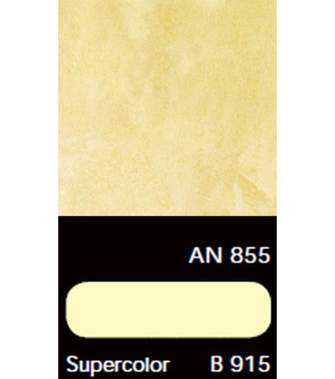 AN 855