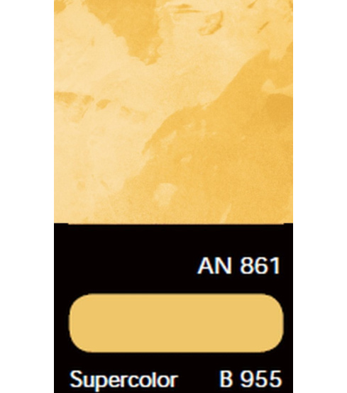 AN 861