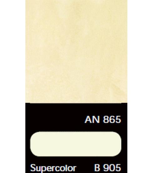 AN 865