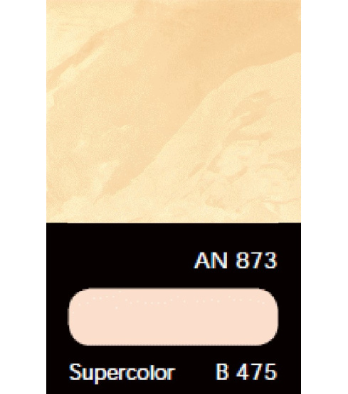 AN 873