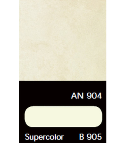 AN 904