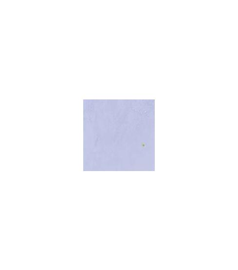Kornblume VO-19