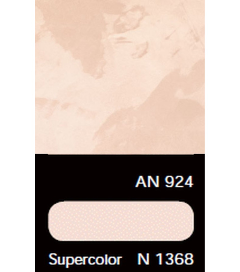 AN 924