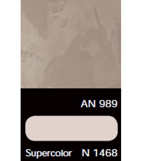 AN 989